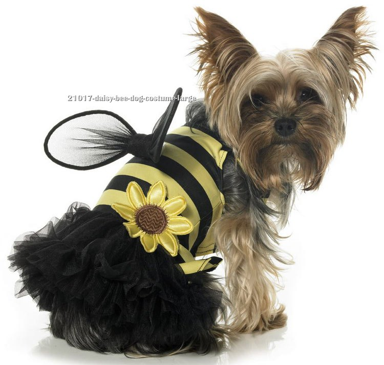Daisy Bee Dog Costume
