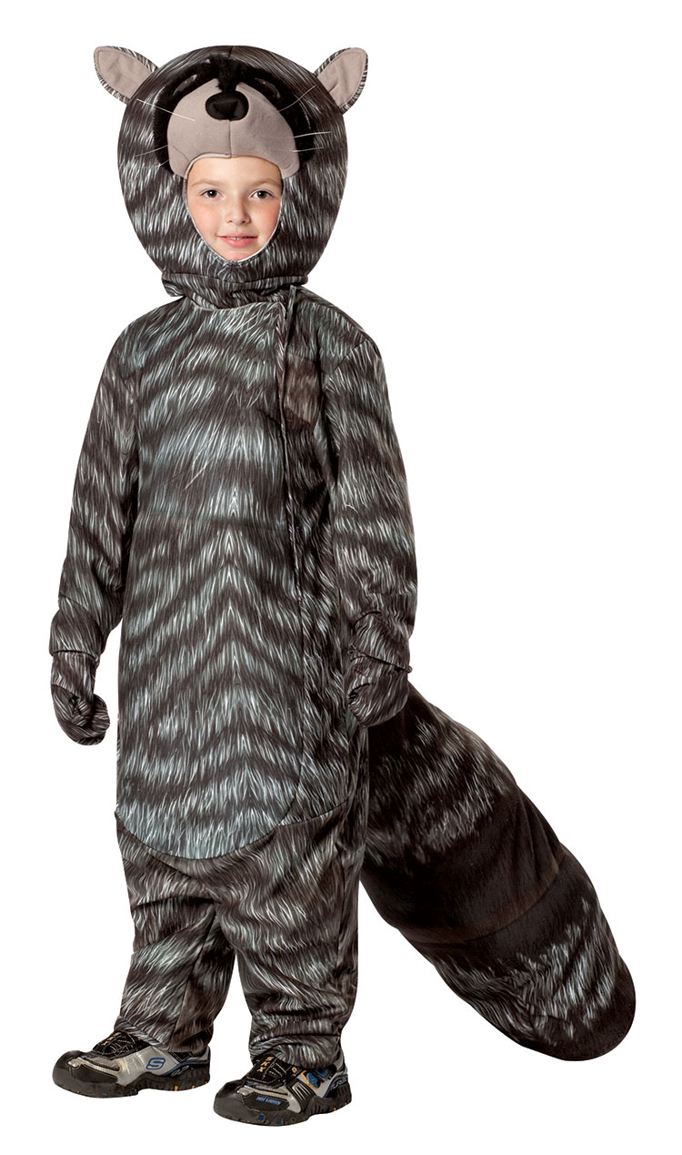 Raccoon Costume For Kids