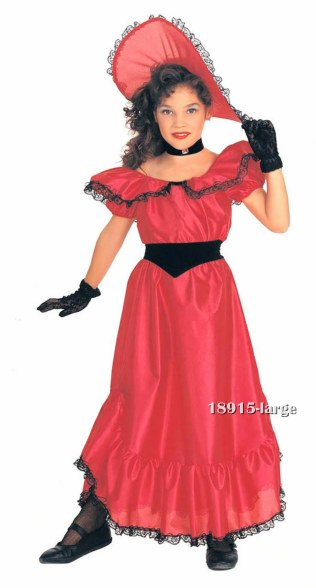 Southern Belle Dress Costume