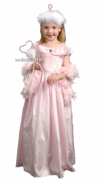 Complete Classic Sleeping Beauty Costume