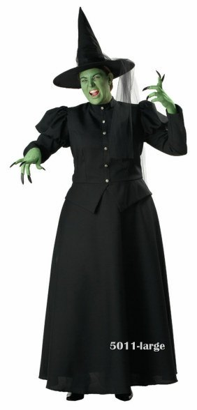 Adult Plus Size Premier Wicked Witch Costume