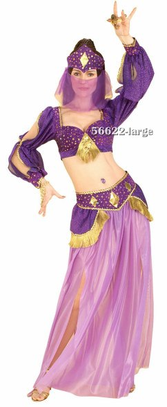 Adult Dance of the Seven Veils Belly Dancer Costume