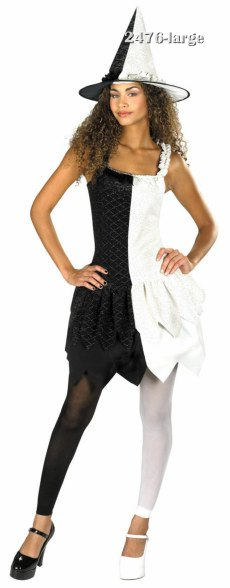 Adult and Teen Witch Choice Witch Costume