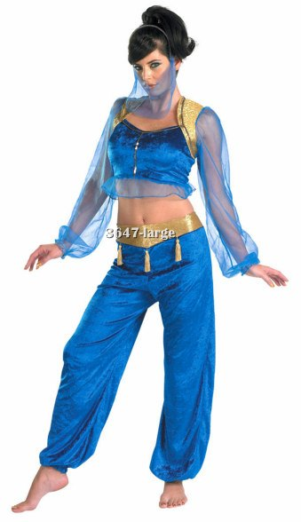 Teen or Adult Genie Costume