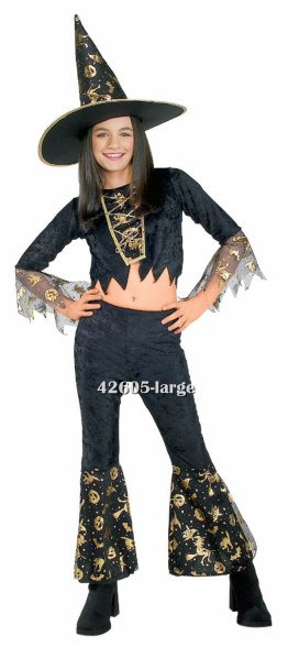 Shimmering Sorceress Teen Witch Costume