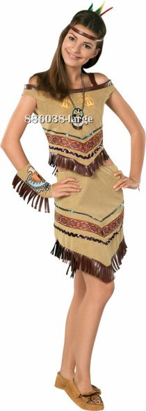 Teen Native Indian Princess Costume