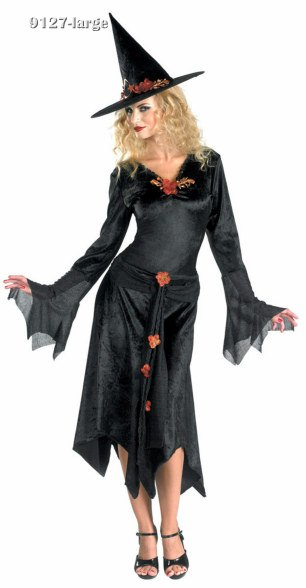 Teen or Adult Sienna Rose Witch Costume