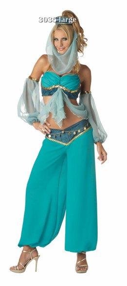 Super Deluxe Harem's Jewel Belly Dancer Costume