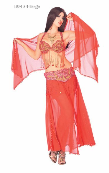 Deluxe Sexy Red Harem Dancer Costume
