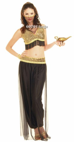 Black and Gold Harem Girl Costume