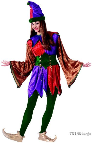Adult Renaissance Jester or Clown Costume