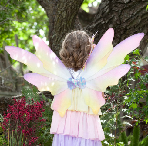 Dawn Fairy Child Wings