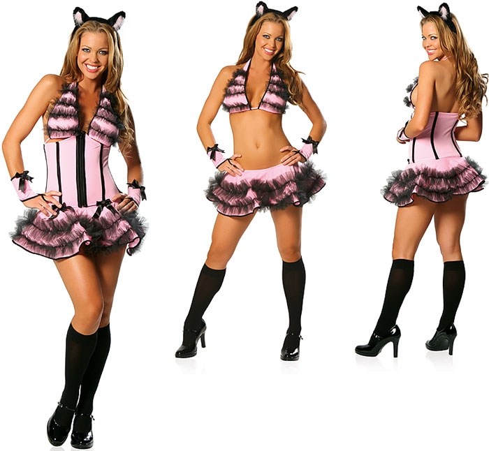 Sexy Playful Pussy Cat Costume