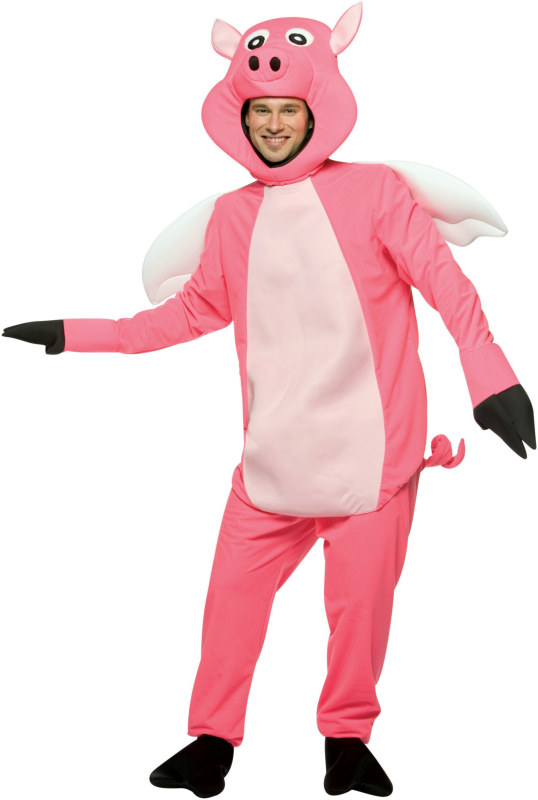 Flying Pig Adult Costume
