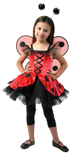 Child Tutu Ladybug Costume