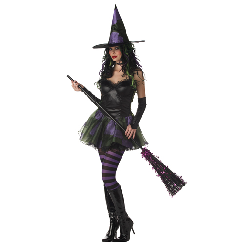 Rebel Wicked Witch of The West Adult Costume