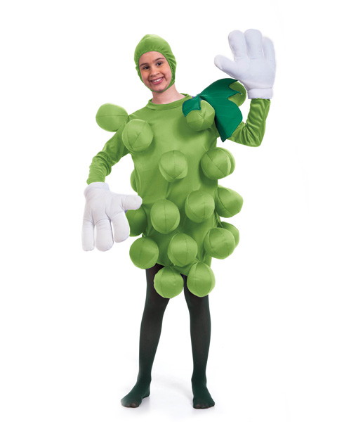 Unisex Green Grapes Childs Costume