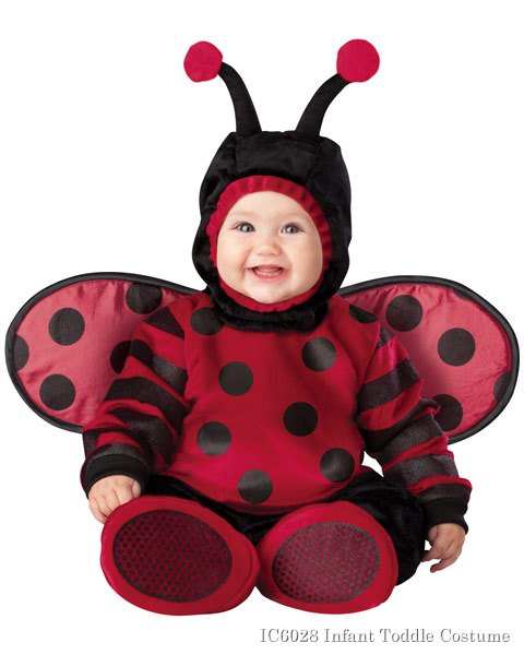 Infant Toddler Itty Bitty Lady Bug Costume