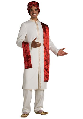 Adult Bollywood Guy Costume