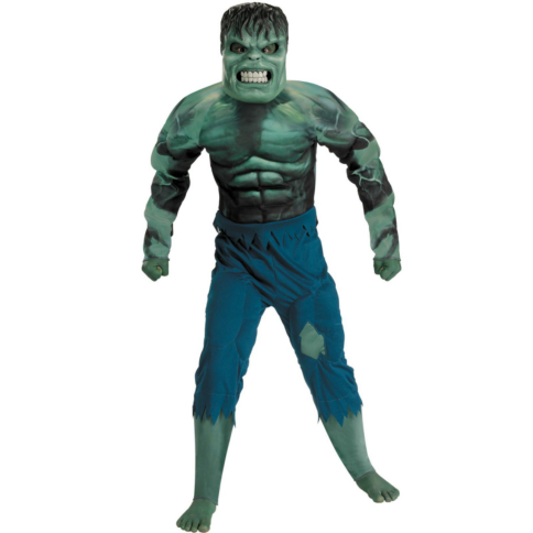 The Incredible Hulk 2008 Movie Deluxe Muscle Chest Hulk Child Co