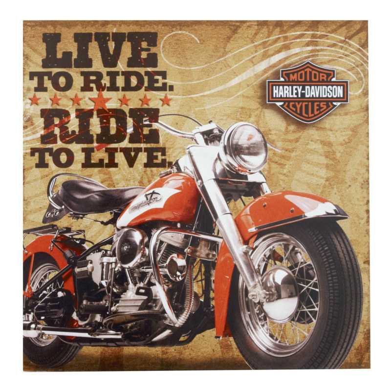 Harley Davidson Lunch Napkins (16 count)