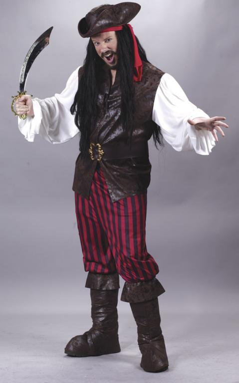 High Seas Pirate Man Adult Costume