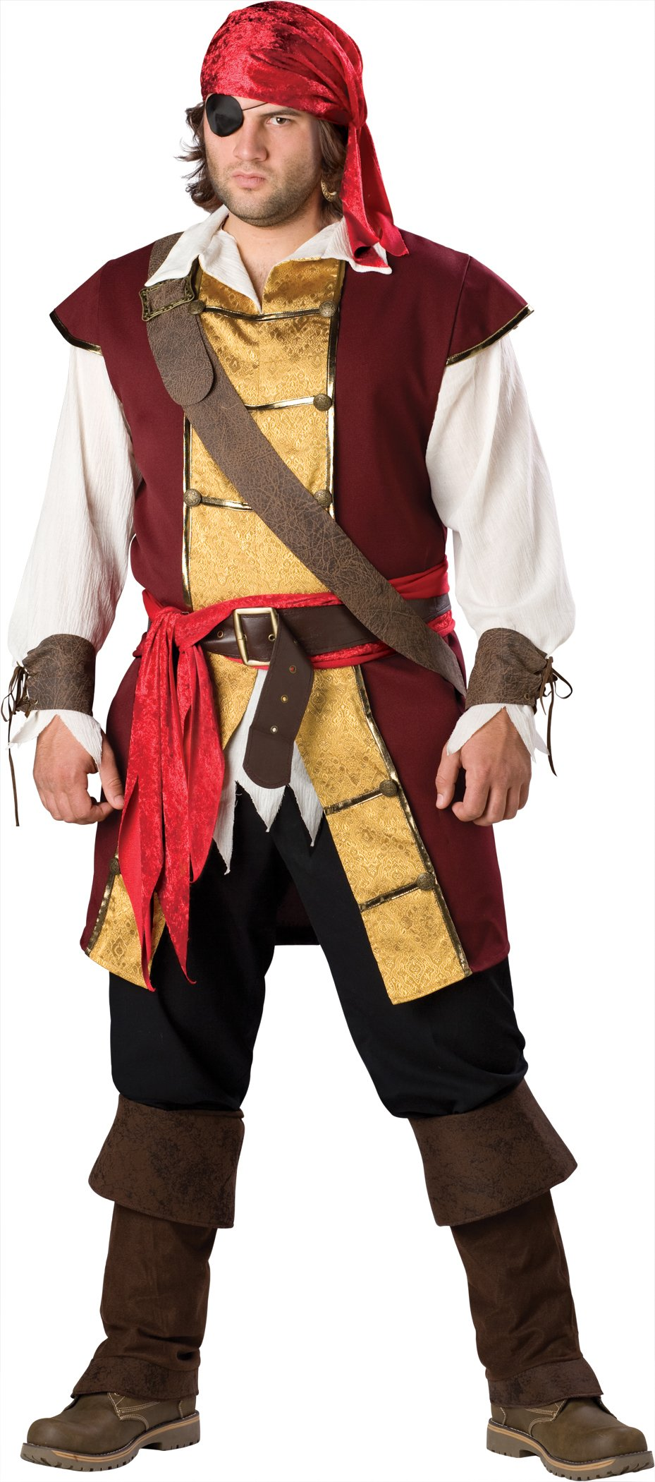Swashbuckler Adult Plus Costume
