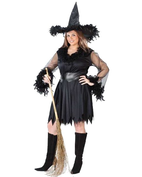 Womens Plus Sexy Feather Witch Costume