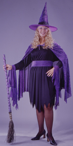 Shimmering Witch Plus Size Adult Costume