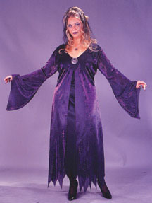 Spell Spinner Plus Size Adult Costume