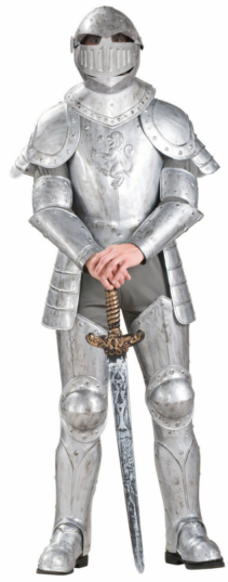 Knight in Shining Armor Adult Costume