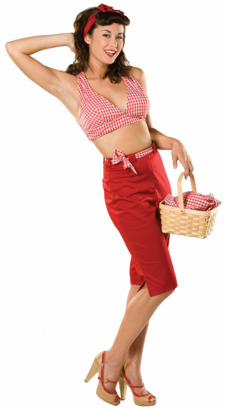 Picnic Pennie Adult Costume
