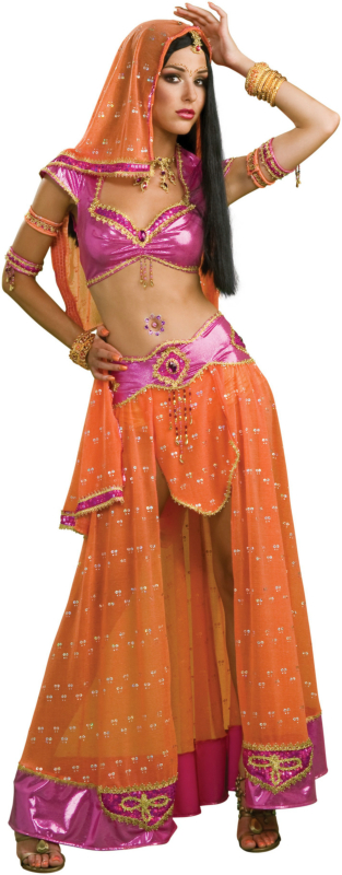 Bollywood Dancer Adult Costume