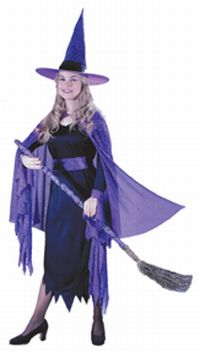 Shimmering Witch Adult Costume