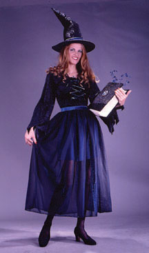 Velvet Storybook Witch Adult Costume