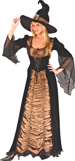 Taffeta Coffin Witch Adult Costume