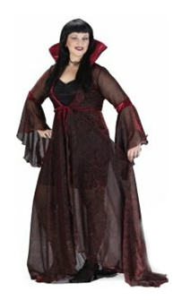 Witch Shimmering Rose Plus Size Adult Costume