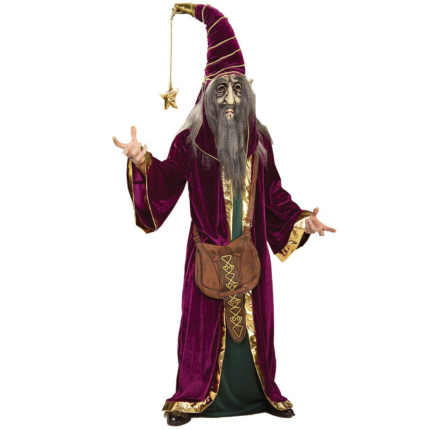 Wonderful Wizard Ultimate Adult Costume