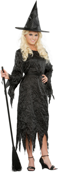 Black Witch Adult Costume