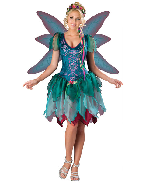 Enchanted Fairy Womens Costume