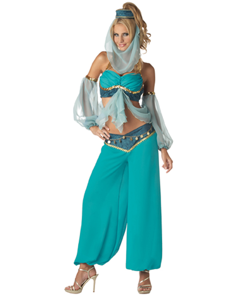 Elite Harems Jewel Costume For Adult